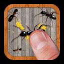 -Ant Smasher- 9.82